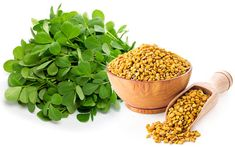 Fenugreek (methi) seeds have been found to contain protein vitamin C niacin p Natural Home Remedies, Herbal Remedies, Natural Medicine, Herbal Medicine, Fenugreek Benefits, Grape Nutrition, Almond Seed, Grape Plant, Vegetable Shop