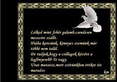 2 Advent, About Me Blog, Beautiful Candles, Grief, Condolences, Attila, Proverbs Quotes
