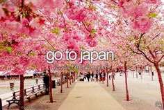 All my life I've wanted to go to Japan and Canada . Well I've done Canada now so Japan just has to be my next adventure
