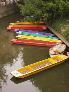 Punts in Oxford, in the Cherwell river by Magdalen College. Wooden Boat Plans, Wooden Boats, Oxford City, Boat Projects, Oxford England, Jon Boat, Canoes, Dream City, Boat Design