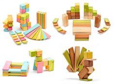 Magnetic Tegu Blocks