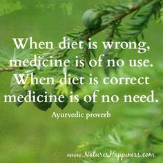 """When diet is wrong, medicine is of no use. When diet is correct medicine is of no need.""  www.NaturesHappiness.com"