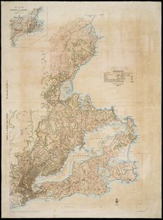 Topographical map showing Dunedin and vicinity [cartographic material] / from surveys by W. Topographic Map, My Journal, New Zealand, Vintage World Maps, Author, Writers