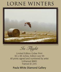 """Lorne Winters, In Flight, 30"""" x 48"""", giclee on canvas, unframed $885.00, or framed $1,045.00"""