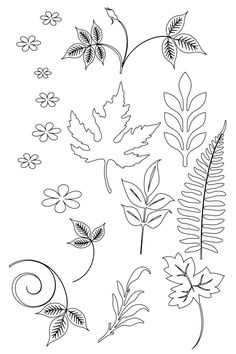 Leaves image only on site.  jwt
