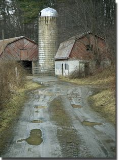 Rainy day puddles mark the path leading to the Bolick Family farm in Watauga County, North Carolina.  The barn, which sits a stone throw away from the New River, still houses several horses.