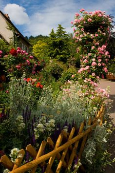 agoodthinghappened:    A Giverny Garden by ~Luinnelle