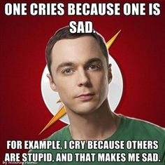 One cries because one is sad.