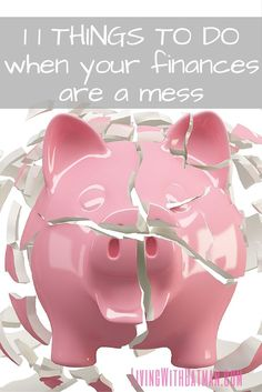 The first step is to put your big girl pants on, stop ignoring the big pink debt elephant in the room and get to work. If you ready to get off the hamster wheel and break the cycle of living paycheck to paycheck, here is my process, step by step, to get b