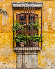 Antigua Guatemala by mnarbona. Please Like http://fb.me/go4photos and Follow @go4fotos Thank You. :-)