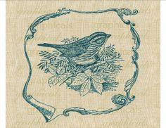 Vintage teal nature bird wren leaves Frame Digital by graphicals, $1.00