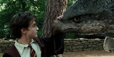 Test your quiz knowledge of all seven Harry Potter movies. Choose the correct Harry Potter movie from the scenes provided. Daniel Radcliffe Harry Potter, Harry James Potter, Harry Potter World, Harry Potter Movie Trivia, Mundo Harry Potter, Harry Potter Cast, Harry Potter Characters, Harry Potter Fandom, Prisoner Of Azkaban