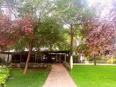 Sidewalk, Event Organization, Gardens, Walkways, Pavement, Curb Appeal