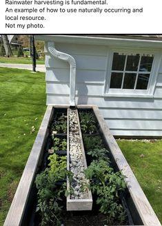Gutter Garden, Rain Garden, Dream Garden, Home And Garden, Garden Bar, Herb Garden, Rainwater Harvesting System, Water Spout, Raised Garden Beds