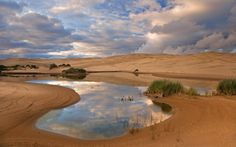 Umpqua Dunes - Siuslaw National Forest, Oregon