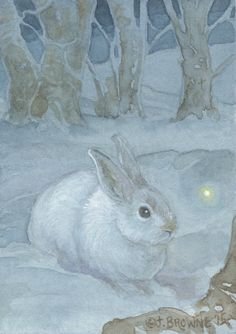 Snow Hare 8.5x11 Signed Print Illustration by brownieman on Etsy