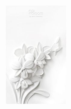 Paper Cutting I White Thai Flowers I Wirin Chaowana Origami Paper Art, Paper Quilling, Diy Paper, Paper Crafts, Kirigami, Paper Cutting, Architecture Origami, White Paper Flowers, Plaster Art