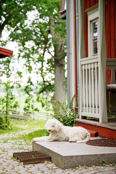 Little red cottage (Sweden)