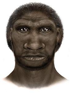 El hombre de Ceprano (Homo cepranensis) es una especie extinta perteneciente al género Homo, basada en la parte superior de un cráneo descubierto por Italo Bidittu en 1994, en la localidad de Ceprano, provincia de Frosinone, Italia.
