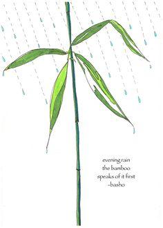 Bamboo card, rain card haiku, poetry card, basho haiku, literary card, garden greeting card, nature lover card, rain lover card, notecard by ZinniaAwakens on Etsy