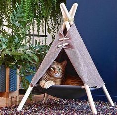 The Adventure Tent is a super fun cat bed, cat hammock, and cat tent in one modern pet friendly design. Made in Canada by Tinker. Cat Teepee, Cat Tent, Cat Hammock, Animals And Pets, Cute Animals, Cat Kennel, Do It Yourself Design, Adventure Cat, Cat Room