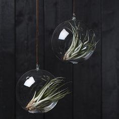 Holiday Decor, Decor, Jungalow Style, Christmas Bulbs, Holiday, Bulb, Jungalow, Home Decor, Room