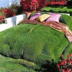Garden bed;)