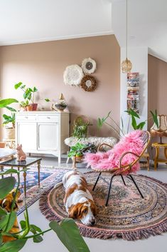 Dog Room Decor, Room Ideas Bedroom, Dead Salmon Farrow And Ball, Living Room Inspiration, Home Decor Inspiration, Farrow And Ball Living Room, Bohemian Living Rooms, Living Room Update, Front Rooms
