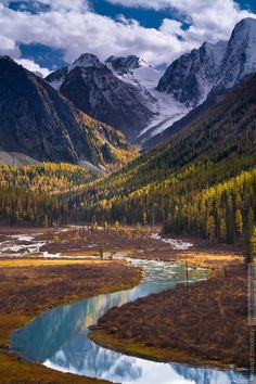 Russia, Altai Republic, Shavla river bend