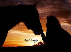 SUNSET EQUESTRIAN MOMENT !!!
