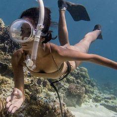 Ocean Underwater, Underwater Pictures, Padi Diving, Scuba Diving, Scuba Girl, Diving Course, Marine Conservation, Snorkelling, Beautiful Ocean