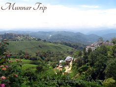 Here I have shared glimpses from our recent trip to Munnar and Cochin. Munnar is a beautiful place known for its scenic beauty, hills, tea estates and a cool climate. Easy Indian Recipes, Munnar, Kerala, Beautiful Places, Articles, Mountains, Simple, Travel, Viajes