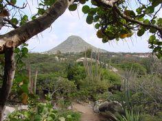 Ayo and Casibari Rock Formations - Things to Do In Aruba - Aruba Tours & Excursions Aruba Tours, Aruba Aruba, Aruba Island, Panama Canal, Natural Bridge, Cruise Port, Rock Formations, Spring Break, Caribbean