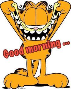 Die 13088 Besten Bilder Von Guten Morgen Good Morning In