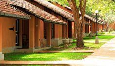 Hoteles de turismo ecológico en Sri Lanka