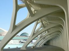 Santiago Calatrava at Valencia, Spain