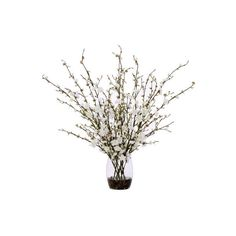 Lux Art Silks White Plum Birch Branch Faux Arrangement ($228) ❤ liked on Polyvore featuring home, home decor, floral decor, flowers, flowers / foliage, plants, flower home decor, white home accessories, branches home decor and birch home decor