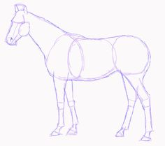 Horse Drawings to Trace | Standing Horse Sketch by SweetLittleVampire