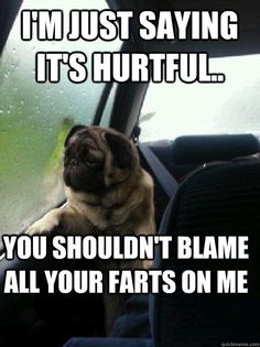 See more 'Introspective Pug' images on Know Your Meme!