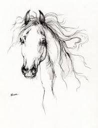 Arabian Horse Drawing 4 Drawing by Angel Tarantella - Arabian Horse Drawing 4 Fine Art Prints and Posters for Sale Horse Drawings, Cartoon Drawings, Animal Drawings, Easy Drawings, Pencil Drawings, Doodle Drawing, Drawing Sketches, Painting & Drawing, Sketching