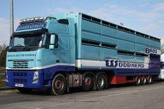 Volvo Trucks, New Trucks, Cool Trucks, Swedish Brands, Commercial Vehicle, Photomontage, Livestock, Brother, Car Wrap