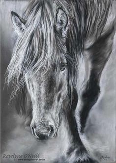 Hey, I found this really awesome Etsy listing at https://www.etsy.com/listing/212830003/through-the-mists-highland-pony-walking