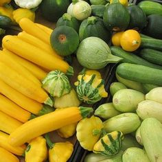 The health benefits of Summer Squash:  Summer squash is a delicious side dish that can be grilled, cooked, sautéed, stuffed. It tastes delicious with the right seasoning and the health benefits are incredible! -Full of Antioxidants: An excellent source of manganese and a good source of Vitamin C. It also contains an unusual amount of antioxidant nutrients including the carotenoids lutein and zeaxanthin (especially helpful in protection of the eyes). - -Blood Sugar Benefits: Metabolism of…