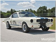 1966 Ford Mustang Shelby GT 350 - From Demo To Racer: The story of a 1966 Shelby G.T. 350