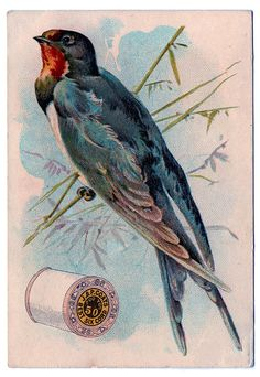 *The Graphics Fairy LLC*: Vintage Sewing Clip Art - Swallow with Thread Spool