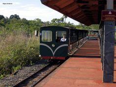 Tren Ecológico de la Selva, Cataratas del Iguazú http://www.lageoguia.org/tren-ecologico-de-la-selva-cataratas-del-iguazu-argentina/