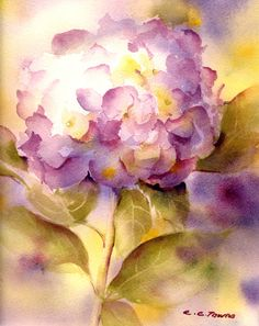 Pink+Hydrangea++Matted+Watercolor+Print++Fine+by+ConnieTownsArt,+$35.00