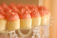 candy, chic, cupcake, cupcakes, cute, delicious, fashion, food, pink, sweet