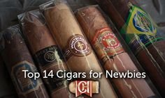 Which cigars do you suggest for your newbie friends? Here's Kayla's compiled list of Top 14 Cigars for Newbies! Check it out!