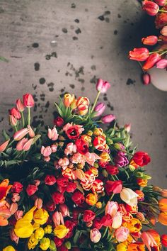 Tulips at the market - Tulpen Dekoration My Flower, Fresh Flowers, Beautiful Flowers, Colorful Flowers, Tulips Flowers, Bouquet Flowers, Beautiful Beautiful, Fall Flowers, Floral Flowers